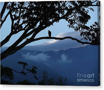 Sunrise At Talari Lodge Canvas Print by Heather Jett