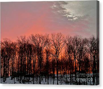 Canvas Print featuring the photograph Sunrise Behind The Trees by Mark Dodd