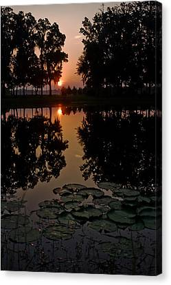 Sunrise From My Pad Canvas Print