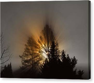 Canvas Print featuring the photograph Sunrise by Irina Hays