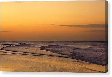 Sunrise On Sanibel Island Canvas Print by Anne Gordon