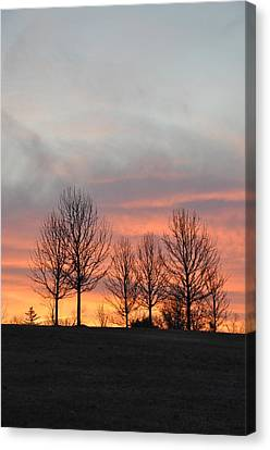 Sunrise On The Hill Canvas Print by Bill Cannon