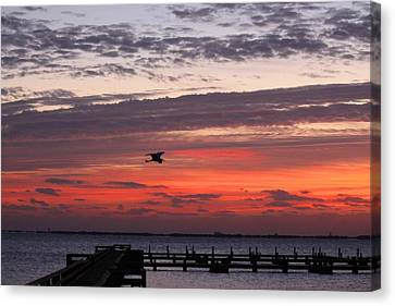 Canvas Print featuring the photograph Sunrise On The Indian River by Jeanne Andrews