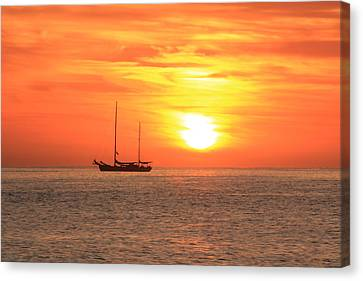 Sunrise On The Sea Of Cortez Canvas Print by Roupen  Baker