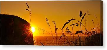 Sunrise Pano Canvas Print by Svetlana Sewell