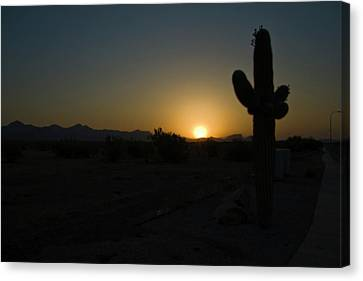 Canvas Print featuring the photograph Sunrise Saguaro by Tom Singleton