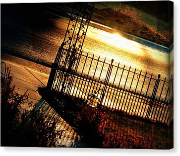 Canvas Print featuring the photograph Sunrise Street Reflections by Cindy Wright