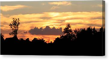 Sunset 1 Canvas Print by Veronica Ventress