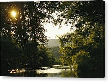 Sunset Above A Riparian Forest Canvas Print by Raymond Gehman