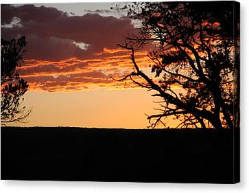 Sunset At Ridgway State Park Canvas Print by Marta Alfred