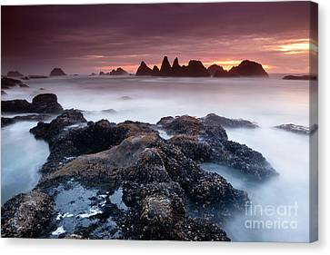 Silk Water Canvas Print - Sunset At Seal Rock by Keith Kapple