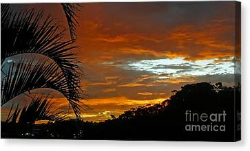 Sunset Behind The Palms Canvas Print by Kaye Menner