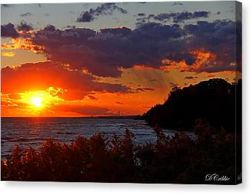 Sunset By The Beach Canvas Print by Davandra Cribbie