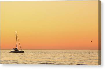 Sunset Cruise At Cape Town Canvas Print by Tony Hawthorne