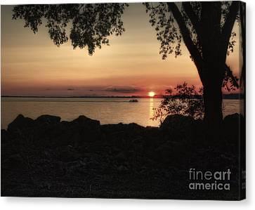 Sunset Cruise Canvas Print by Pamela Baker
