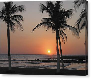 Canvas Print featuring the photograph Sunset by David Gleeson
