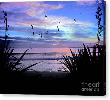 Sunset Down Under Canvas Print by Karen Lewis