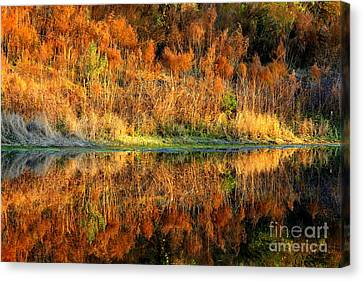 Sunset Glow On The Pond Canvas Print
