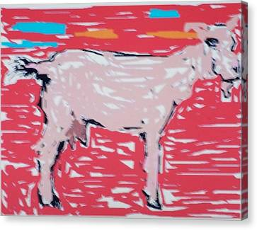 Sunset Goat Canvas Print by Jay Manne-Crusoe