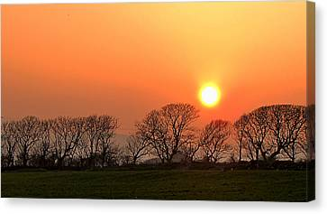 Sunset In Dingle Canvas Print by Barbara Walsh