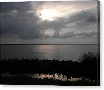 Sunset In Silver Canvas Print by Erica Breetz