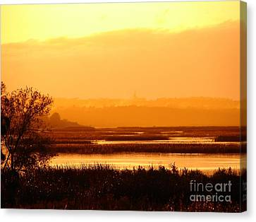 Sunset In The Rain Canvas Print by Ronald Tseng