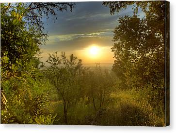 Sunset In Tuscany Canvas Print by Al Hurley