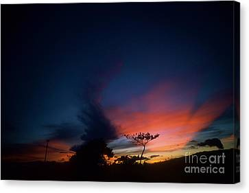 Sunset Leeward Oahu Canvas Print by Mark Gilman