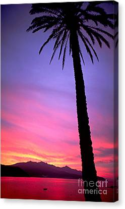 Canvas Print featuring the photograph Sunset by Luciano Mortula