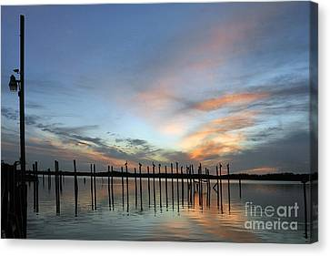 Canvas Print featuring the photograph sunset marina Everglades by Dan Friend
