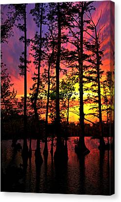 Sunset On Horseshoe Lake 1 Canvas Print by Marty Koch