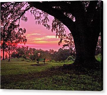 Sunset On The Bench Canvas Print by Michael Thomas