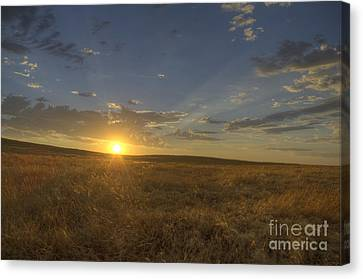 Sunset On The Prairie Canvas Print by Jim and Emily Bush