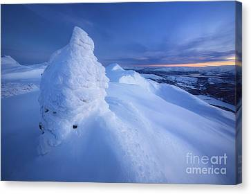 Sunset On The Summit Toviktinden Canvas Print by Arild Heitmann