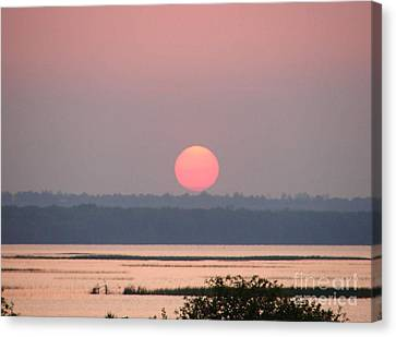 Sunset Over Cook's Bay Canvas Print by Ronald Tseng