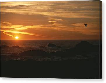 Sunset Over The Pacific Ocean Canvas Print by Todd Gipstein