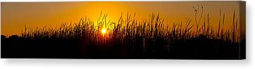 Sunset Over The Prairie Canvas Print by Steve Gadomski