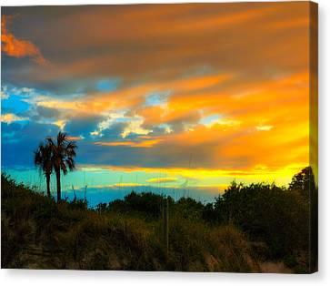 Sunset Palm Folly Beach  Canvas Print by Jenny Ellen Photography