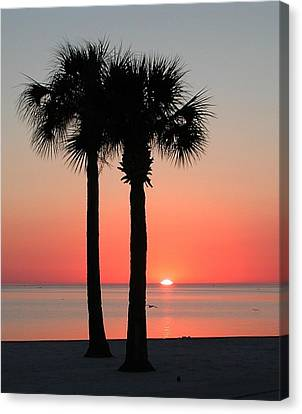 Sunset Pink Canvas Print