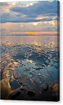 Jaco Canvas Print - Sunset Reflection by Anthony Doudt