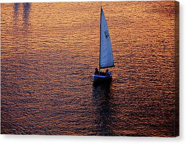 Charles River Canvas Print - Sunset Sailing by Rick Berk