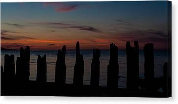 Sunset Silhouette Canvas Print by Matt Dobson