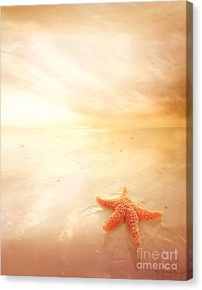 Blending Canvas Print - Sunset Star Fish by Lee-Anne Rafferty-Evans