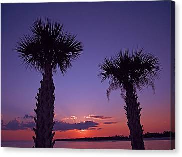 Canvas Print featuring the photograph Sunset Through The Palms by Brian Wright