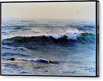 Sunset Watch  Canvas Print by Kathy Bassett