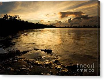 Sunset With Miami In The Distance Canvas Print by Matt Tilghman