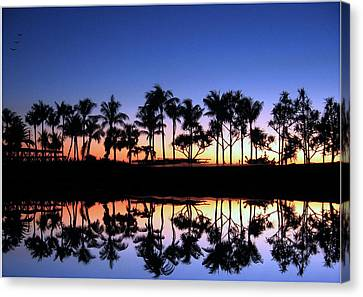 Sunsettrees Canvas Print