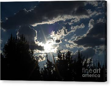 Sunshine Always Returns Canvas Print