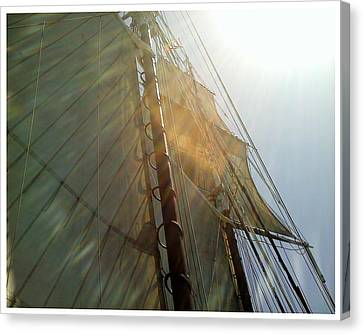 Sunstreaked Canvas Print