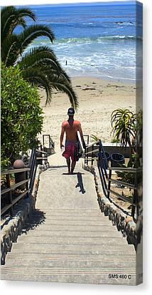 Surfing In Laguna Beach Canvas Print by SM Shahrokni